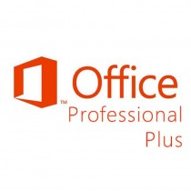 Microsoft Office Pro Plus 2013 - gebraucht
