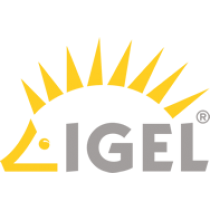 IGEL Workspace Edition 1 year Maintenance